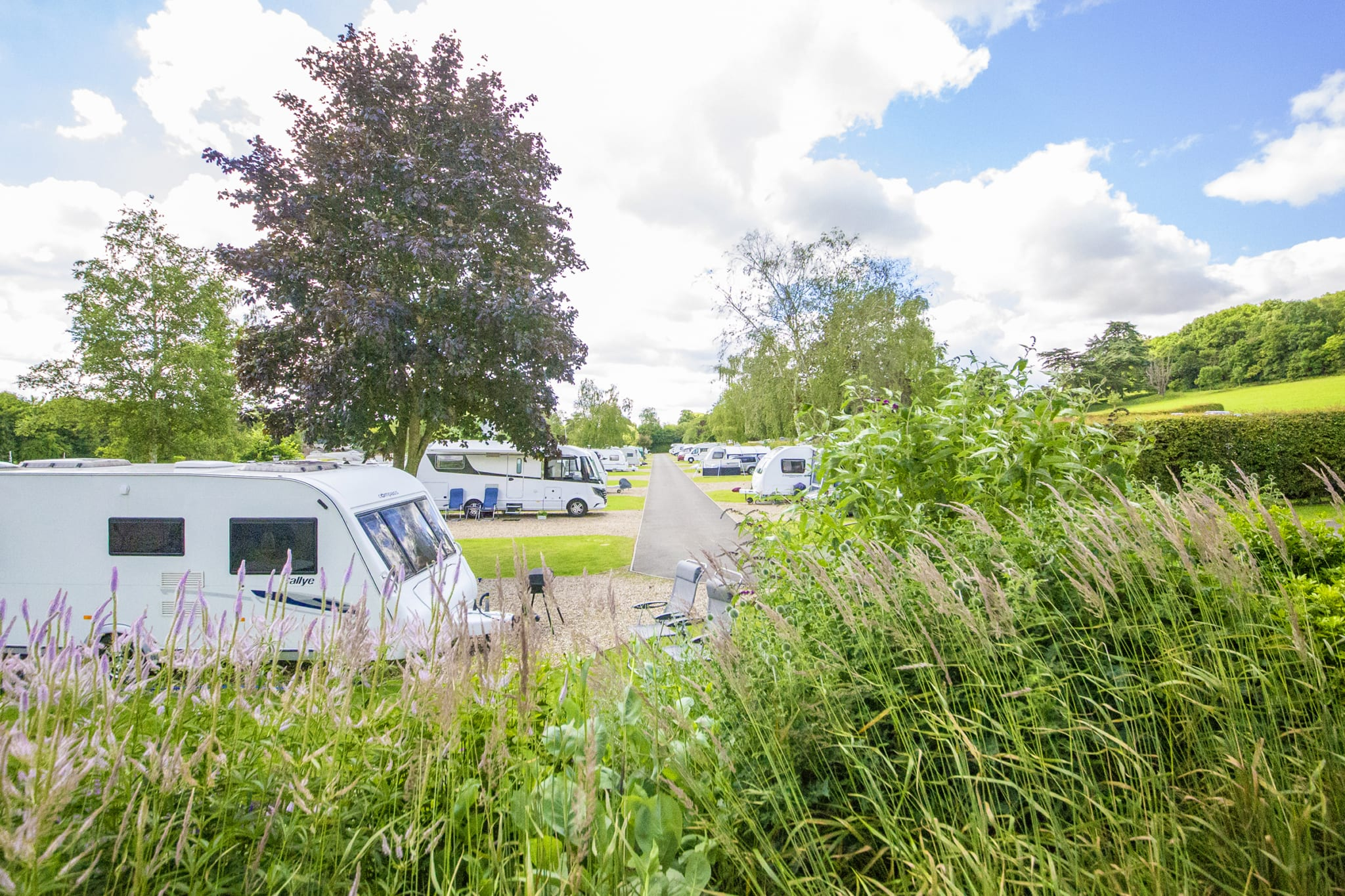 Swiss Farm Touring & Camping - Henley on Thames